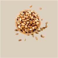 Cacahuète grillée